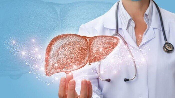 Hiểu rõ bệnh gan nhiễm mỡ