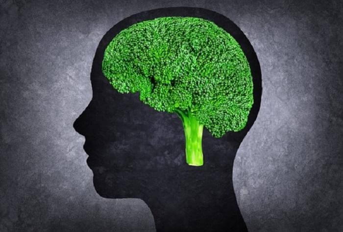 Thành phần trong súp lơ xanh giúp cải thiện trí nhớ