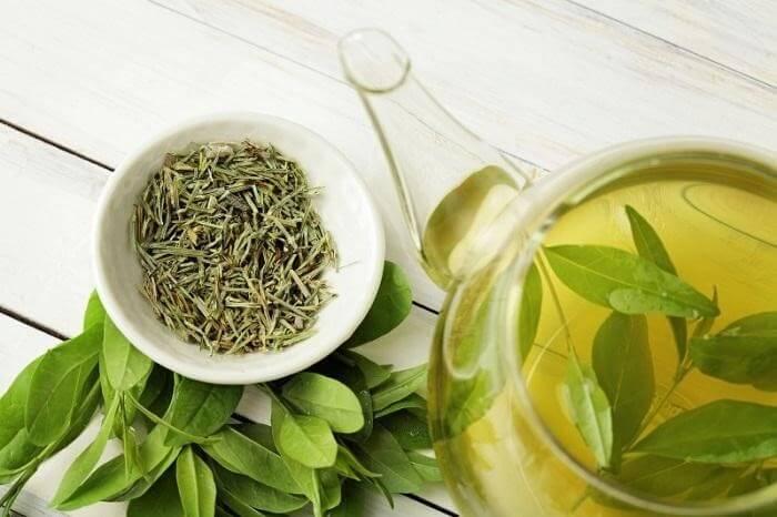 Uống trà xanh mỗi ngày giúp chống lại tế bào ung thư