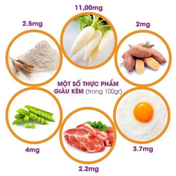 Các thực phẩm chứa nhiều kẽm nên bổ sung hàng ngày