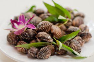Ăn sò huyết thường xuyên giúp nam giới tăng cường sức bền và cải thiện chất lượng tinh binh