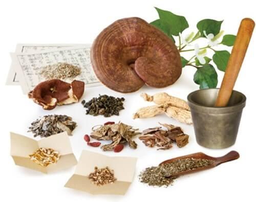 Có rất nhiều bài thuốc Đông y chữa đau nhức xương khớp
