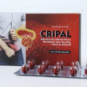Vỉ và hộp sản phẩm Cripal